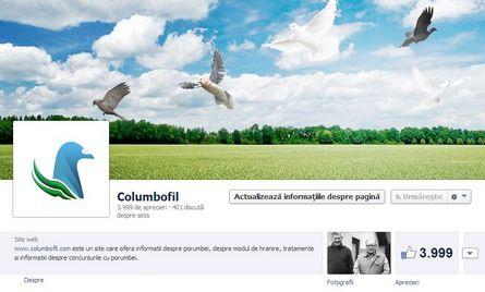 facebook 3999 like-uri