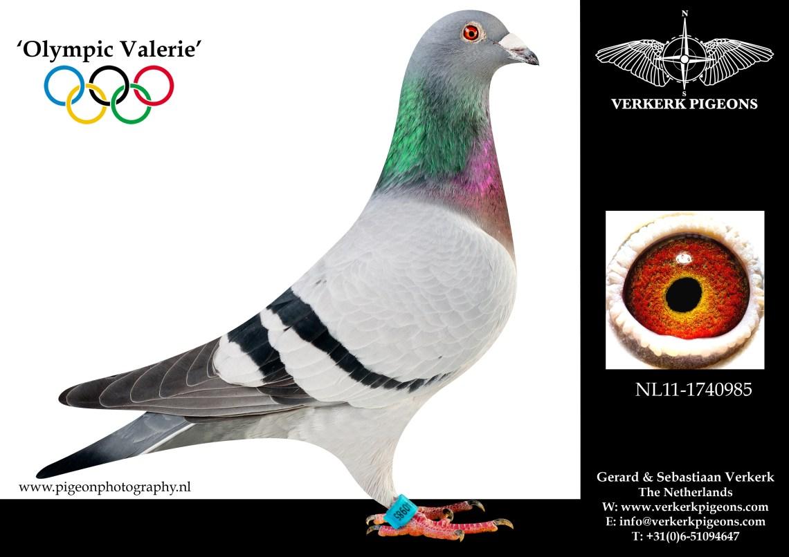 VerkerkNL11-1740985