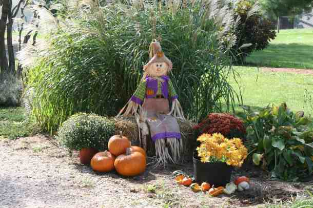 fall and halloween pumpkin scarecrow
