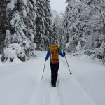 Metro Parks Annual Winter Hike Series
