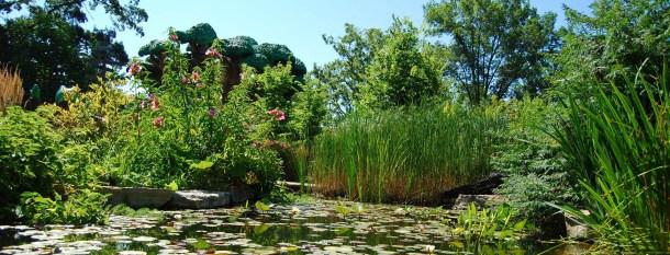 https://www.greatparks.org/parks/glenwood-gardens/the-highfield-discovery-garden