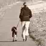Virtual PetPromise Rescue Run and Walk 2021