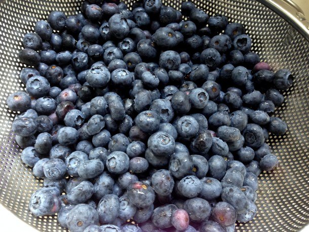 berry picking around columbus