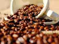 columbus coffee fest