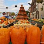 Pumpkin EVERYTHING at The Great Circleville Pumpkin Show