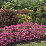 The most beautiful public gardens in Columbus
