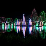 Wildlights Member Preview Night at Columbus Zoo