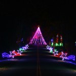 Butch Bando's Holiday Fantasy of Lights and Santa's House