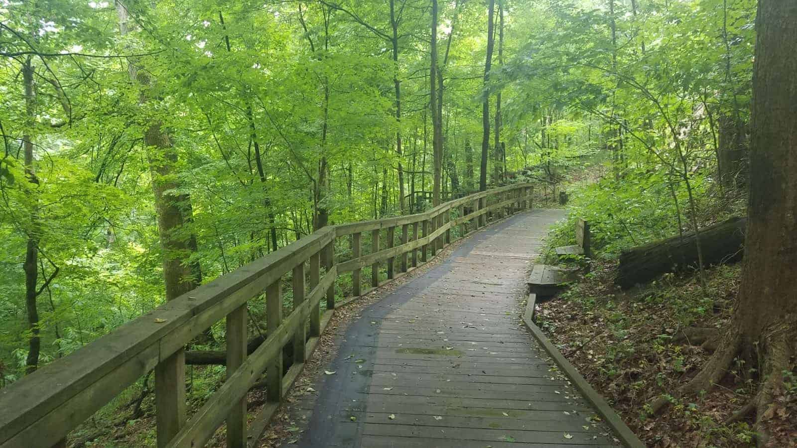 Check Out These Nature Walks And Scenic Hiking Trails In Columbus