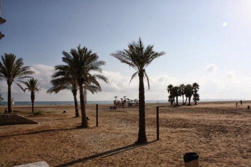 Coma-ruga. Playa en el centro con palmeras