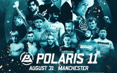 Thoughts on Polaris 11