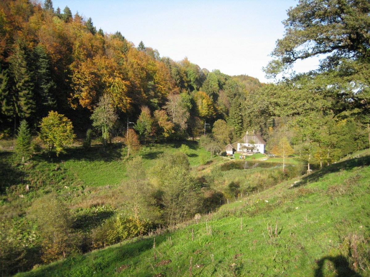 La ferme en automne