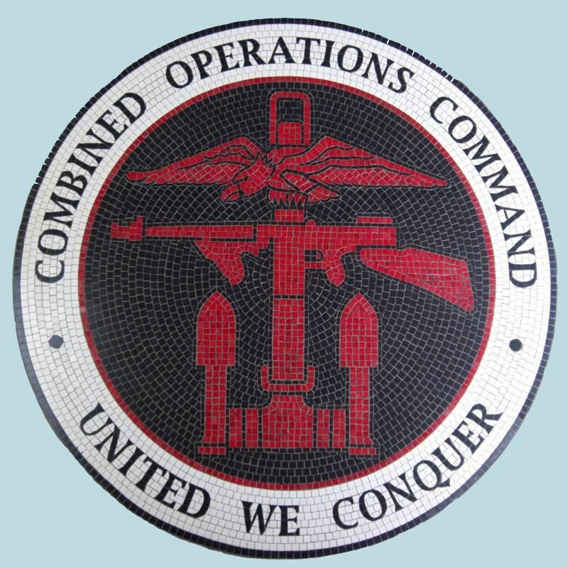 Image result for combined operations command