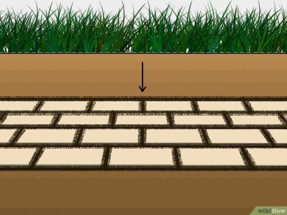 Immagine titolata Grow Grass Between Pavers Step 4