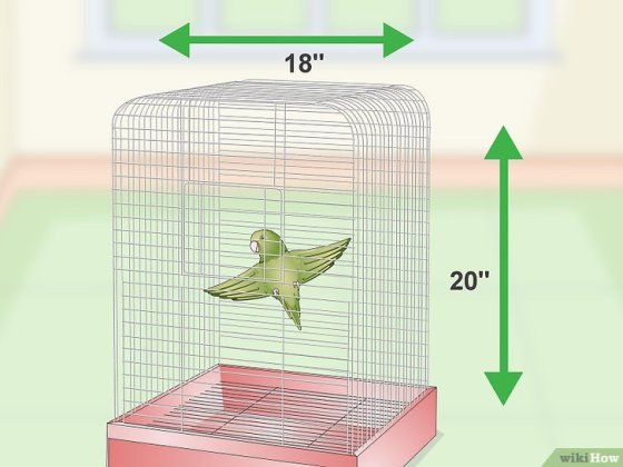 Immagine titolata Set Up a Parrotlet Cage Step 1