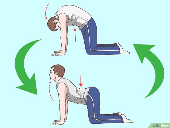 Immagine titolata Strengthen Your Lower Back Step 8