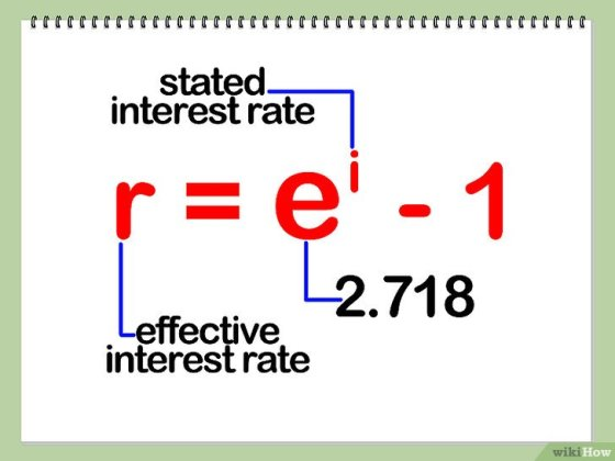 Immagine titolata Calculate Effective Interest Rate Step 5