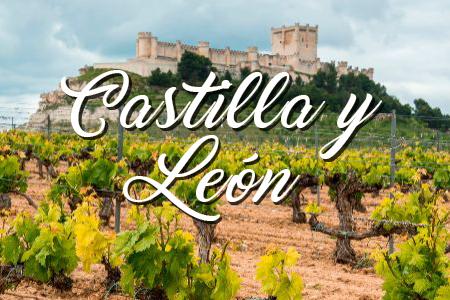 D.O Castilla y León
