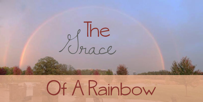 grace of rainbow