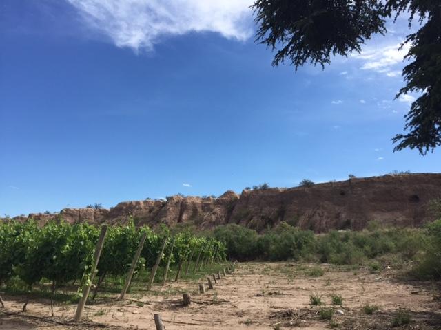 Barrancas, or the ravines, in Maipú.