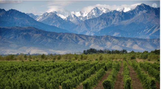Mendoza and the Andes, via MIC.