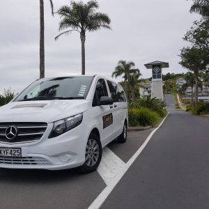 Mercedes Valante 2017 White