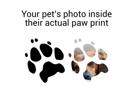 your pet's photo inside their actual paw print