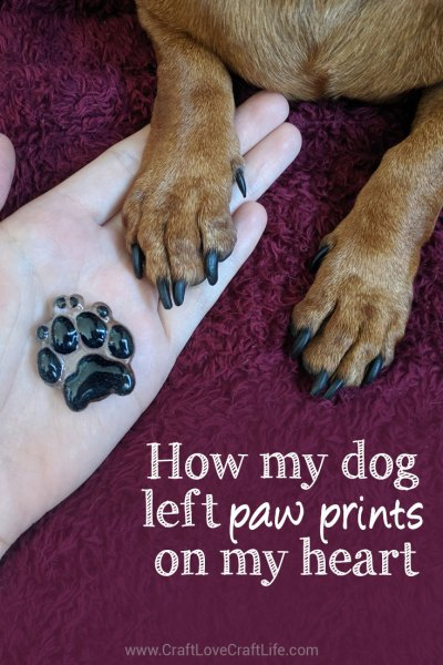 How my dog left paw prints on my heart