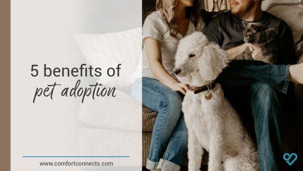 5 benefits of adopting a pet