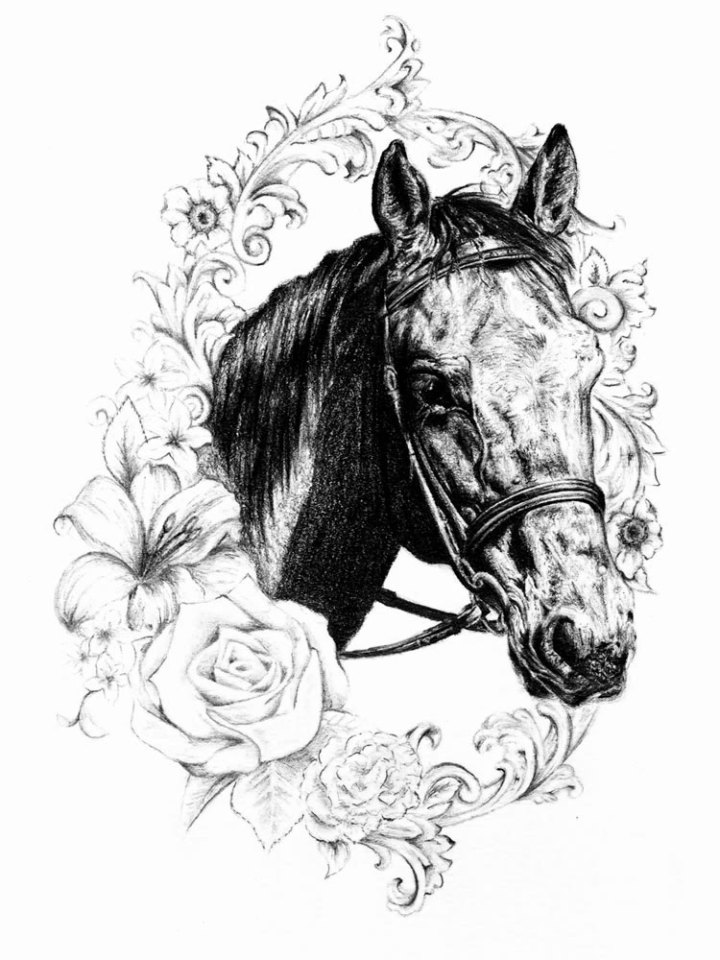 horse tribute portrait