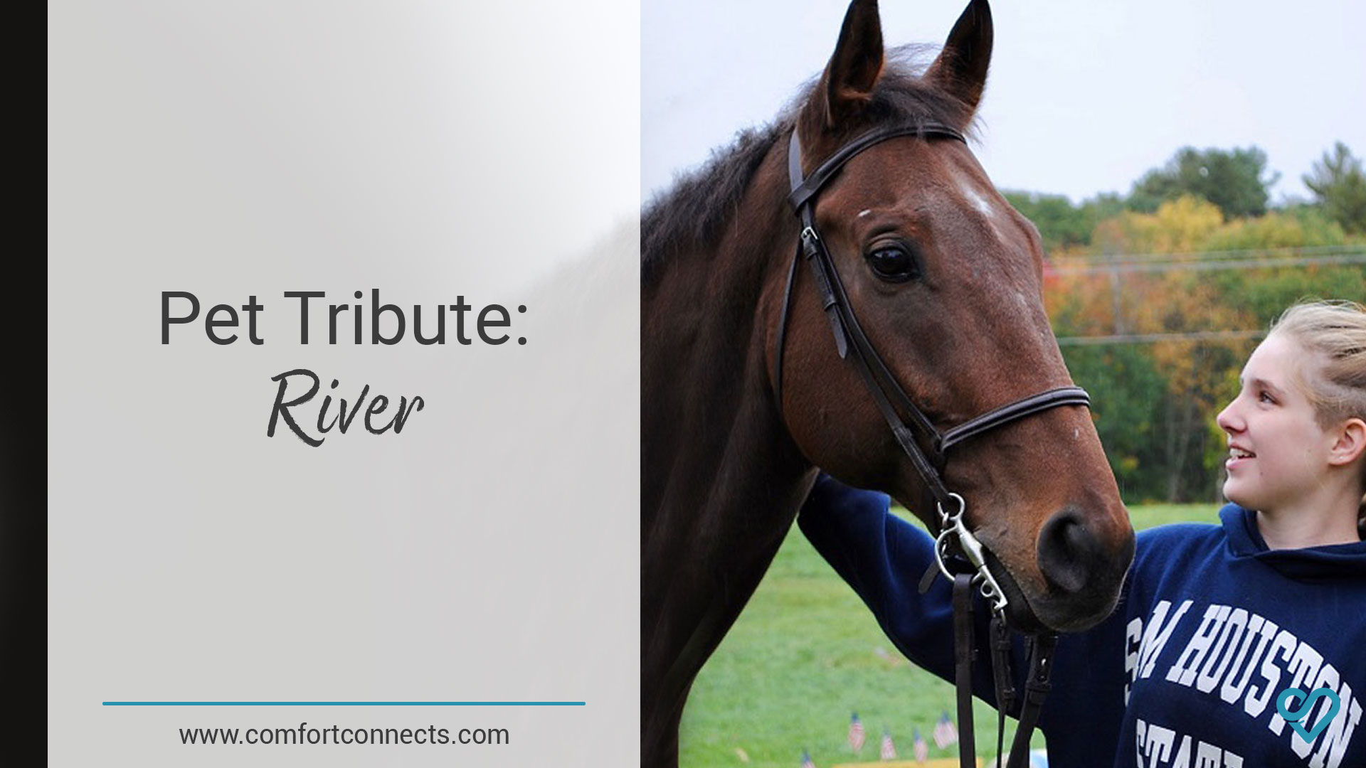 Pet Tribute: River