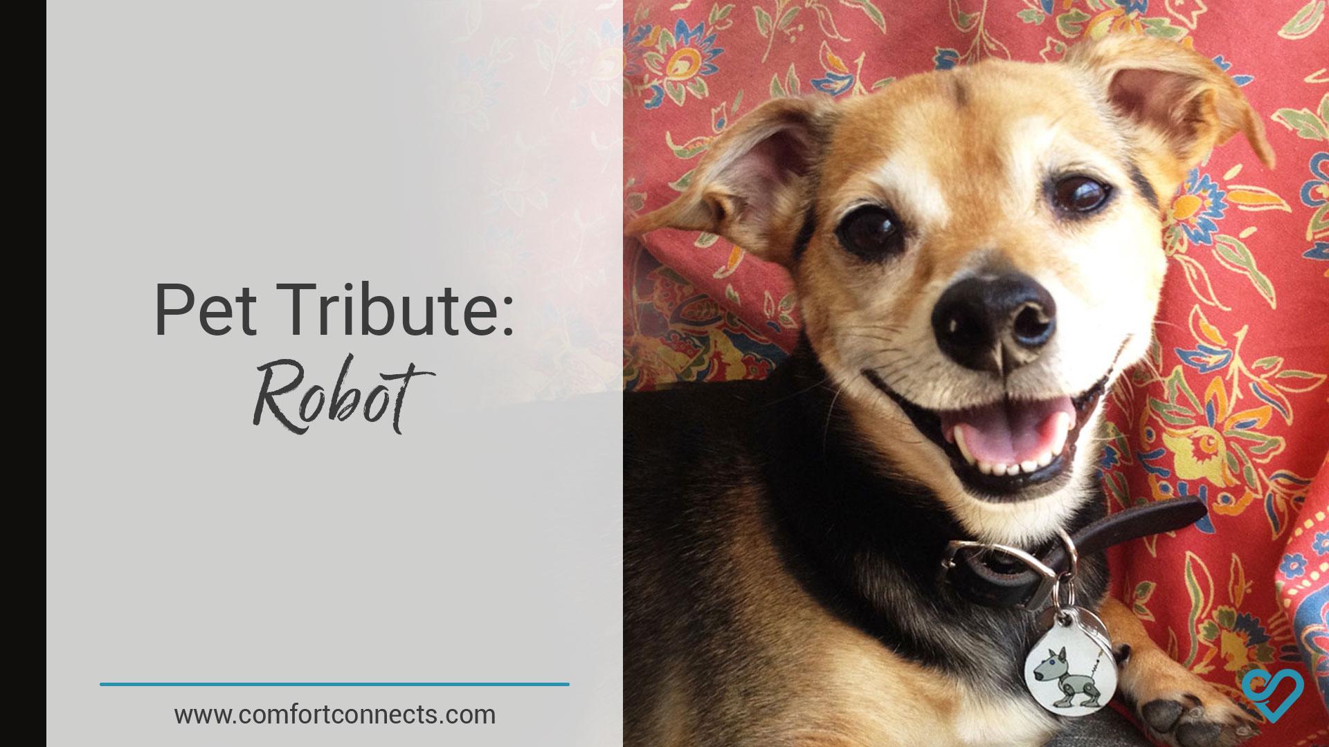 Pet Tribute: Robot