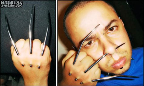 Real Wolverine Claws
