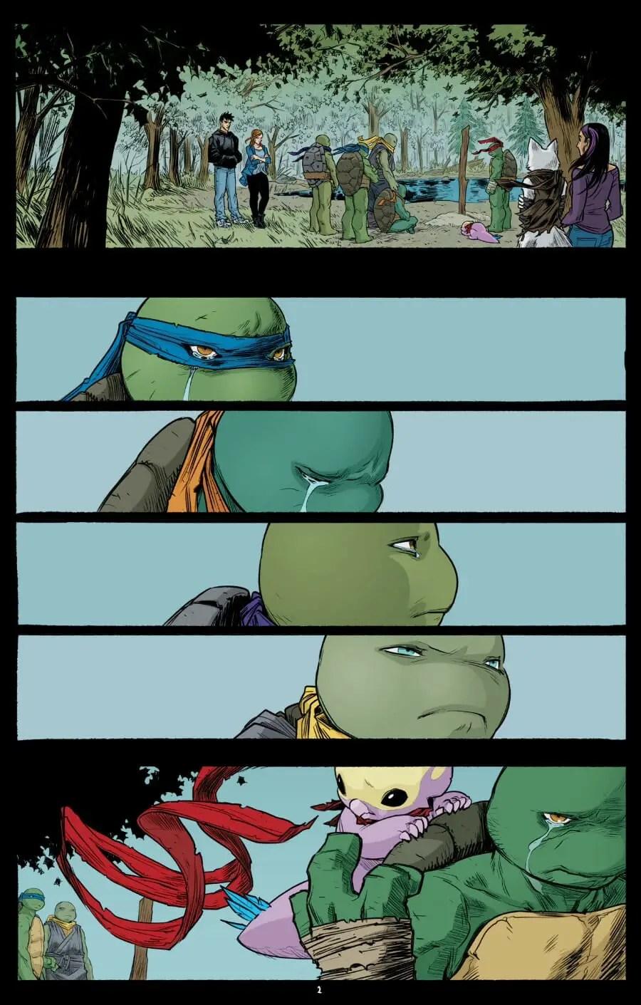 Buy Or Skip Sophie Campbell S Teenage Mutant Ninja Turtles