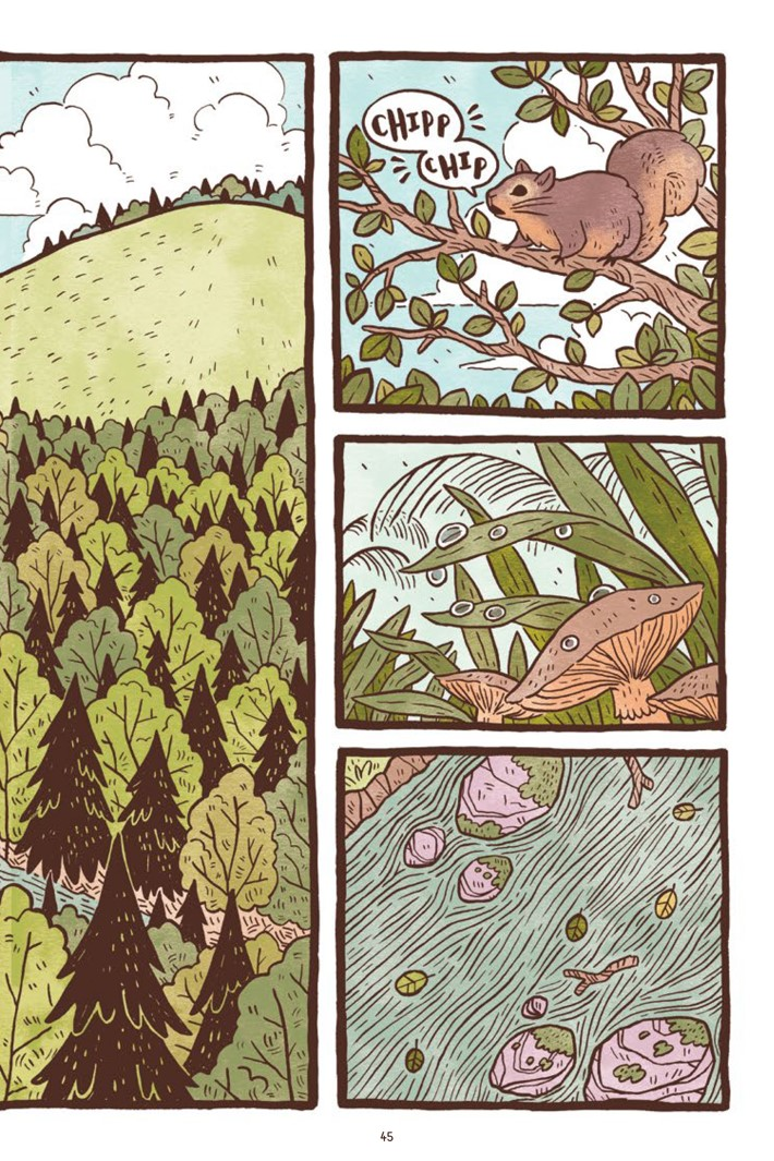 Pages-from-PILU-V1-REFERENCE-3-2 ComicList Previews: PILU OF THE WOODS GN