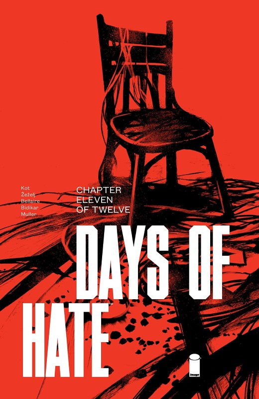 Days of Hate #11 cover by Danijel Zezelj