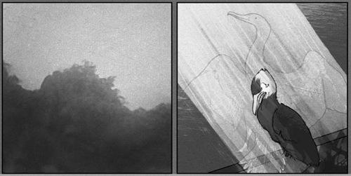 duncan-bird-shadow.jpg