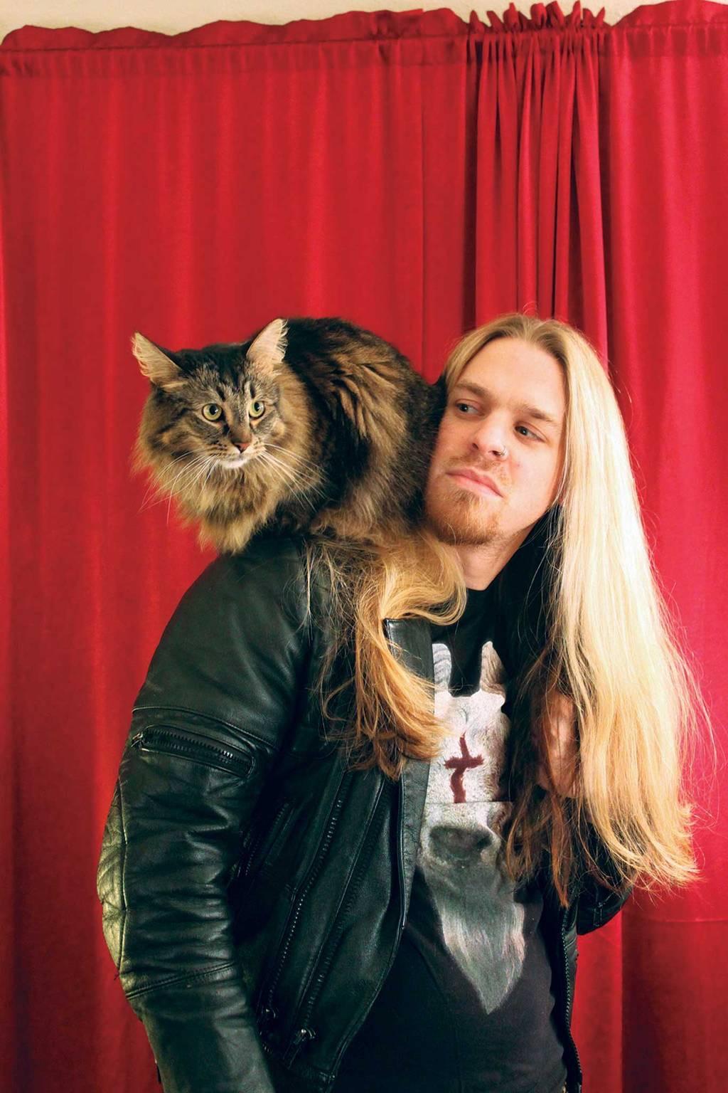Aub-Driver-Metal-Cats.jpg