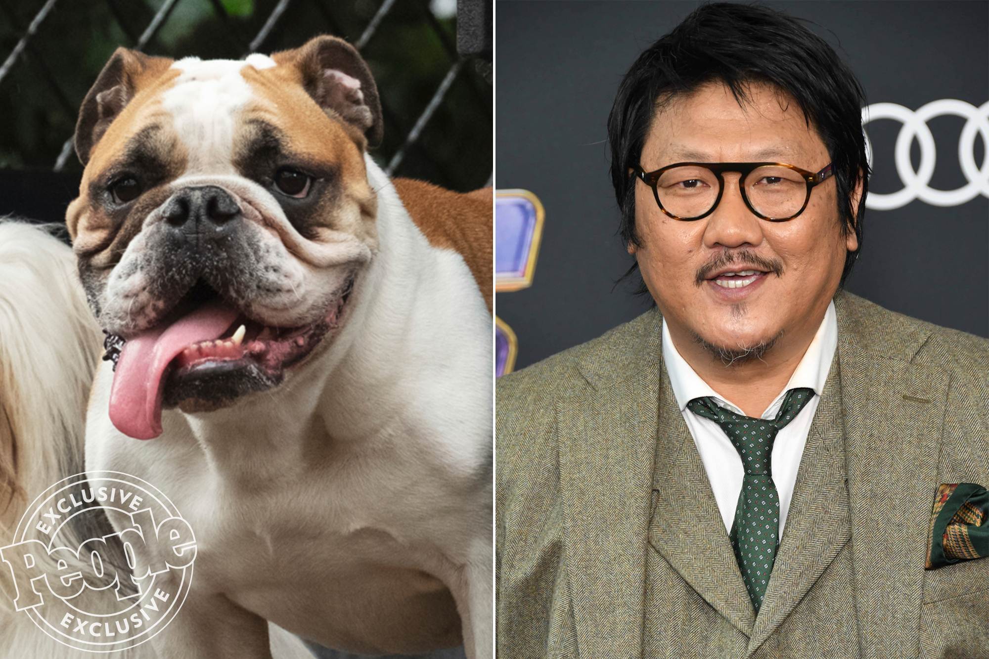 Meet The Good Dogs And Cast Of Disney S Lady And The Tramp Live Action Remake The Beat
