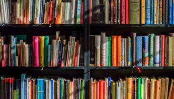 Books on a shelf...maybe some YA novels?