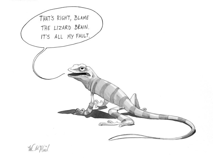 lizard cartoon will mcphail