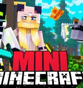 Minecraft Mini 11