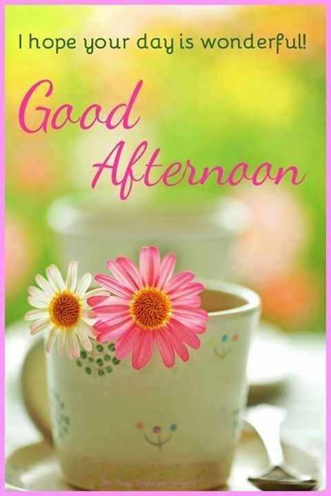 good afternoon nature good afternoon quotes afternoon