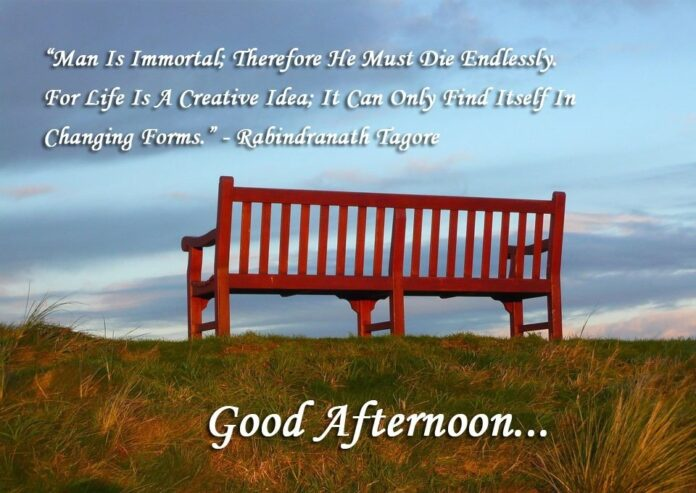 good afternoon quotes wishes and message for friends with