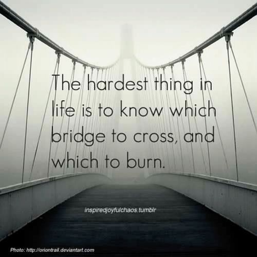 the hardest thing in life is to know which bridge to cross
