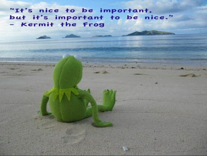 wise words from kermit the frog