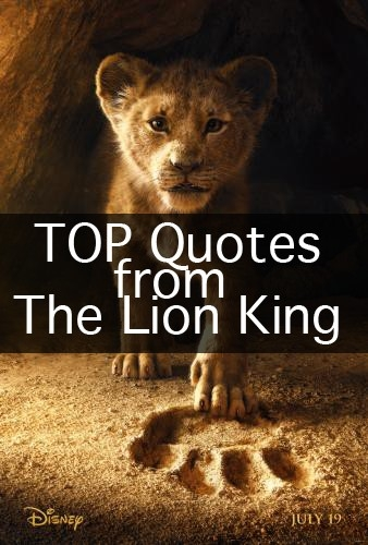 2019 the lion king quotes enzas bargains