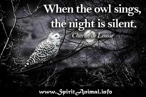 owl quotes spirit animal info