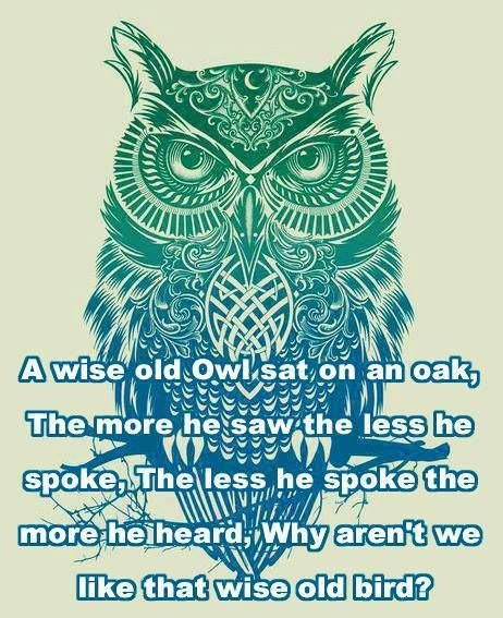 owl wise quotes