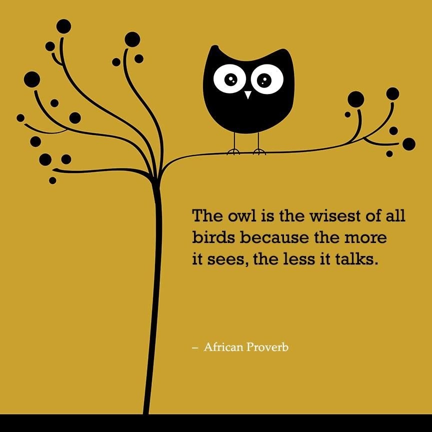 words to ponder owl quotes owl african proverb